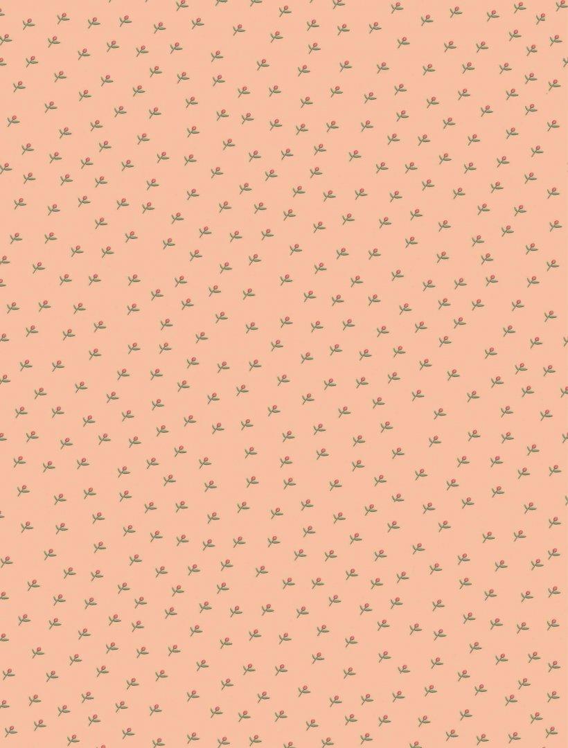 Иллюстрация 1 из 36 для Золушка и другие сказки - Коллоди, Перро, Андерсен | Лабиринт - книги. Источник: Лабиринт