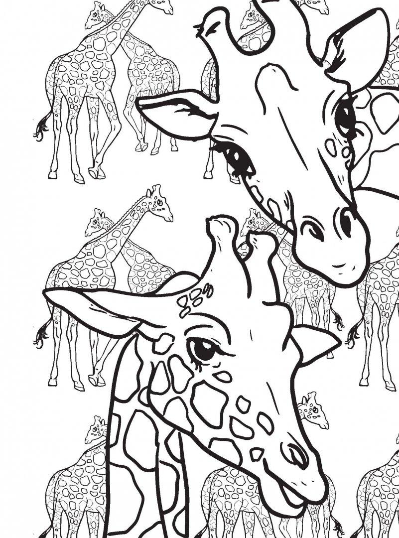 Иллюстрация 6 из 60 для Дикие животные. Раскраска ...