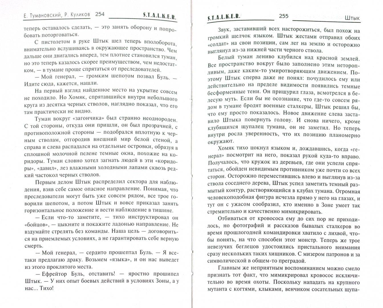 Иллюстрация 1 из 14 для Штык - Куликов, Тумановский | Лабиринт - книги. Источник: Лабиринт