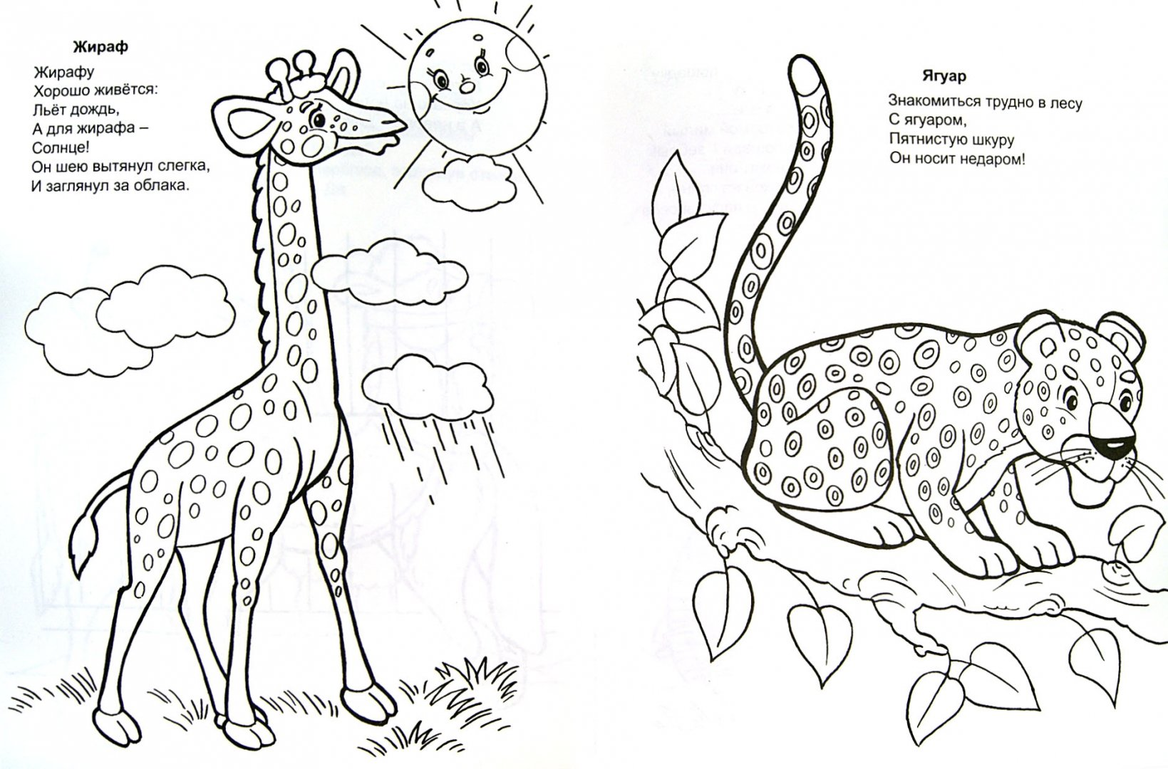 Иллюстрация 1 из 8 для Разноцветные животные - Владимир Борисов | Лабиринт - книги. Источник: Лабиринт