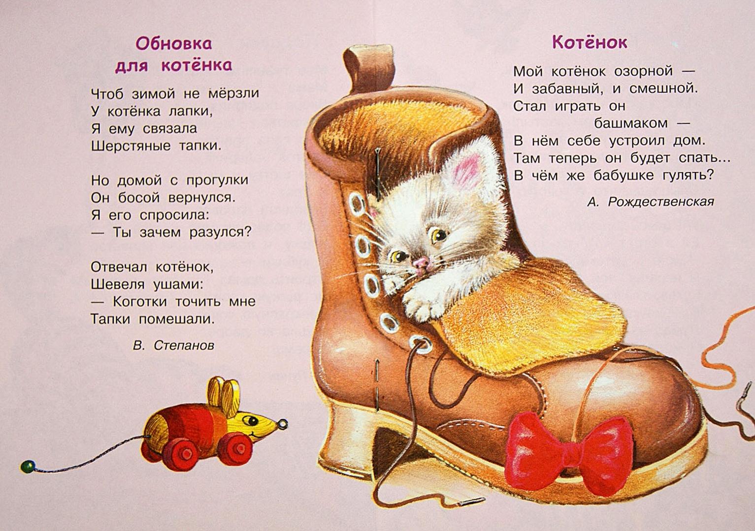Иллюстрация 1 из 26 для Хочу котенка   Лабиринт - книги. Источник: Лабиринт