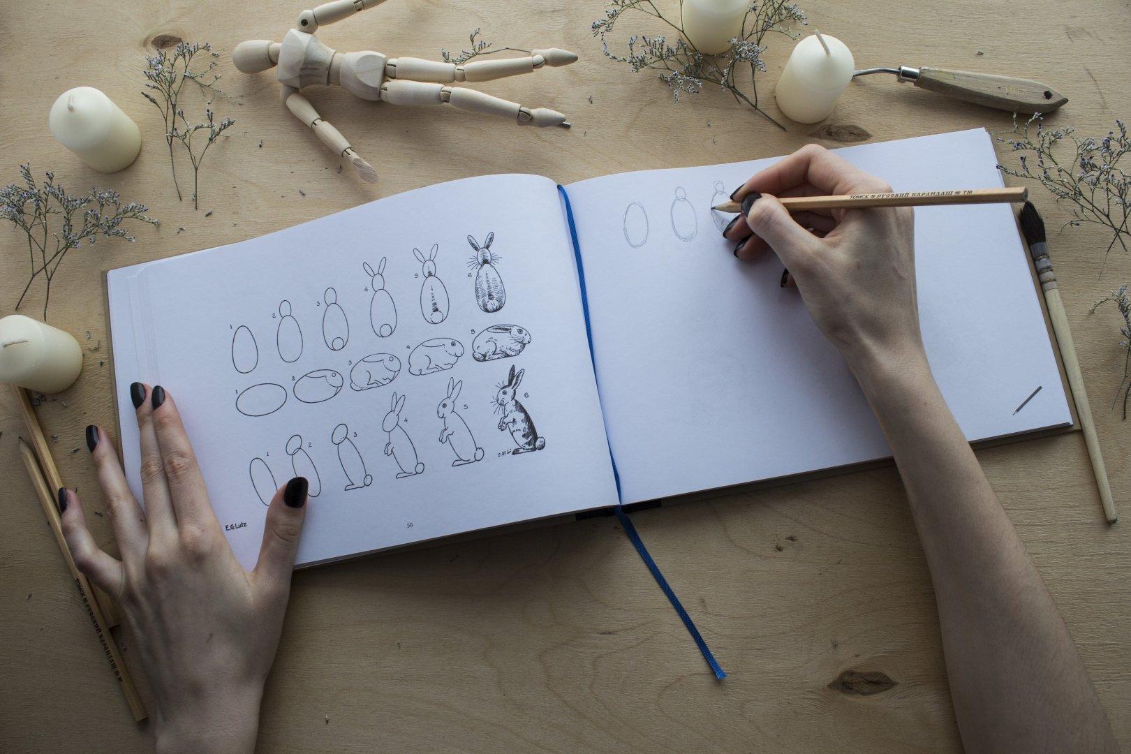 Как стать хорошим художником - советы школы рисунка