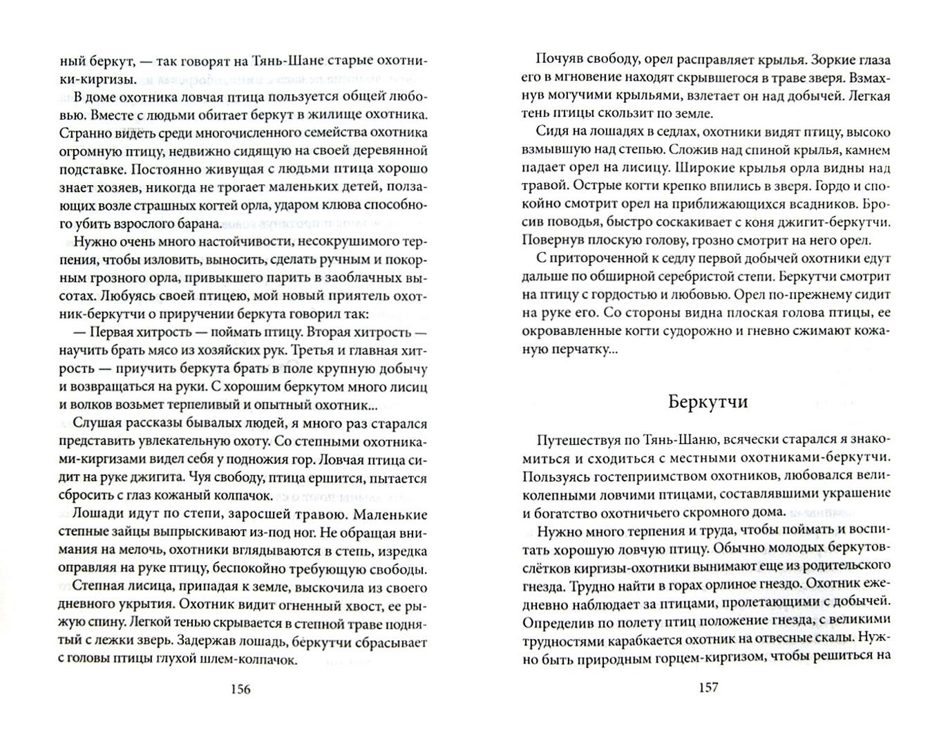 Иллюстрация 1 из 2 для Рассказы об охоте - Бианки, Сладков, Ливеровский, Соколов-Микитов, Гарновский | Лабиринт - книги. Источник: Лабиринт