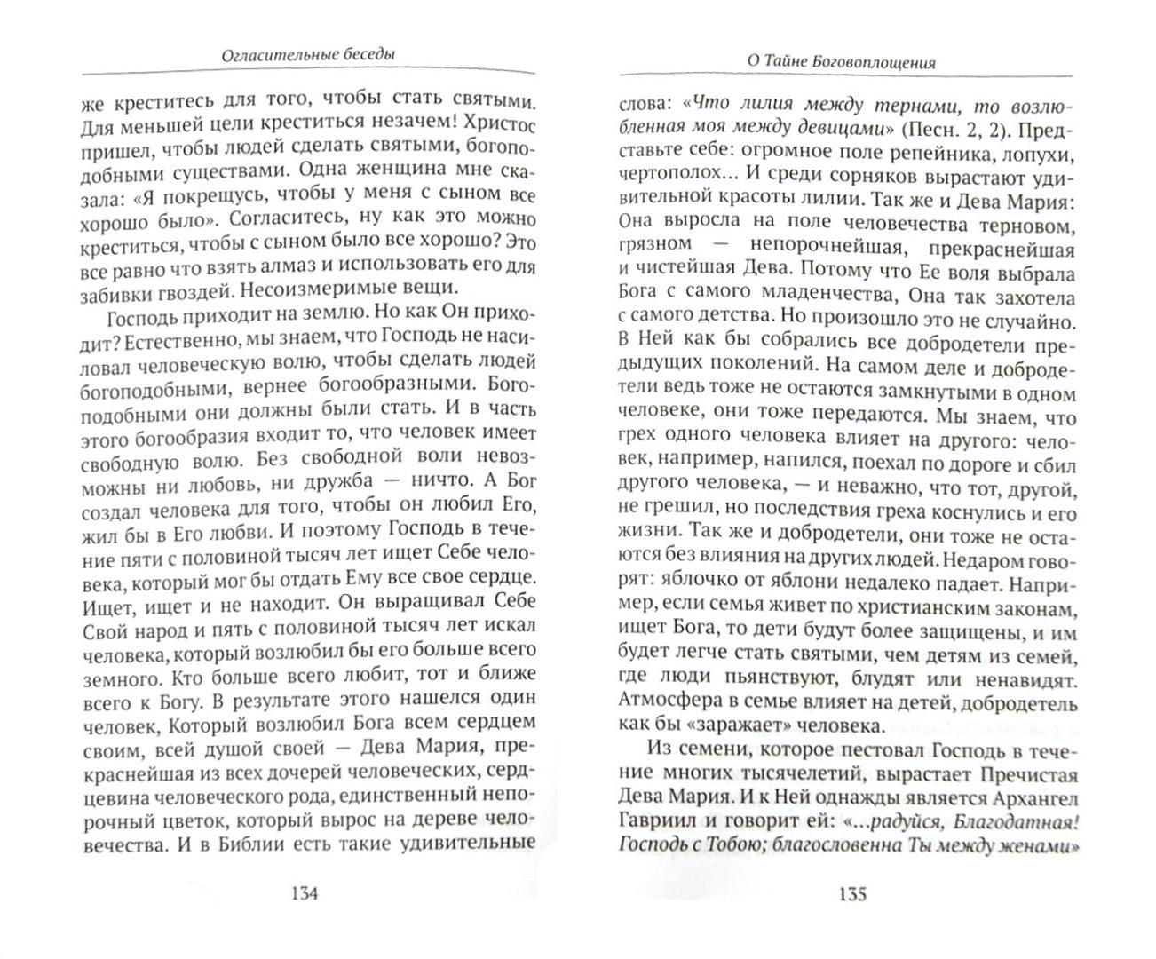 Иллюстрация 1 из 15 для Огласительные беседы - Даниил Священник | Лабиринт - книги. Источник: Лабиринт