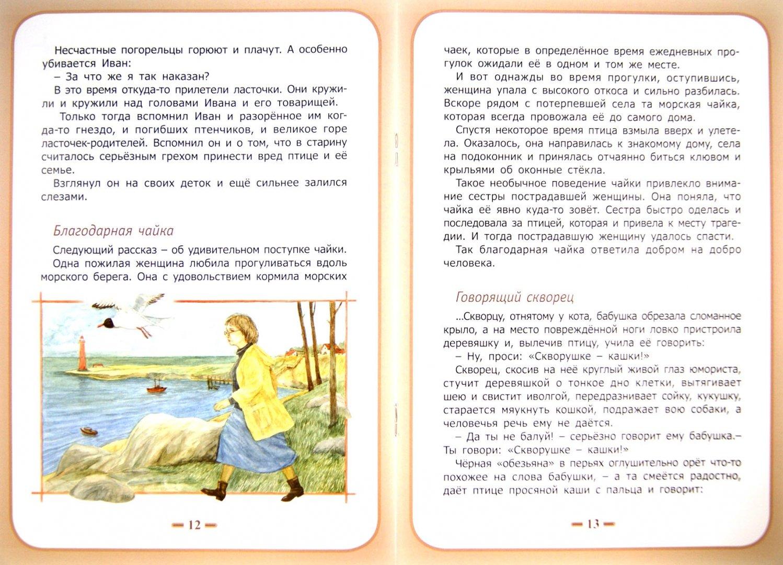 Иллюстрация 1 из 7 для Благодарные животные - Жданова, Белевцева | Лабиринт - книги. Источник: Лабиринт