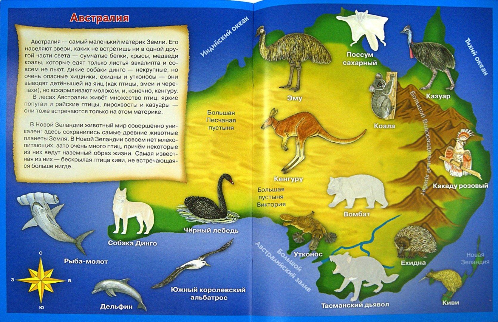 Иллюстрация 1 из 19 для Иллюстрированный атлас мира для малышей. Животные - Л. Образцова   Лабиринт - книги. Источник: Лабиринт