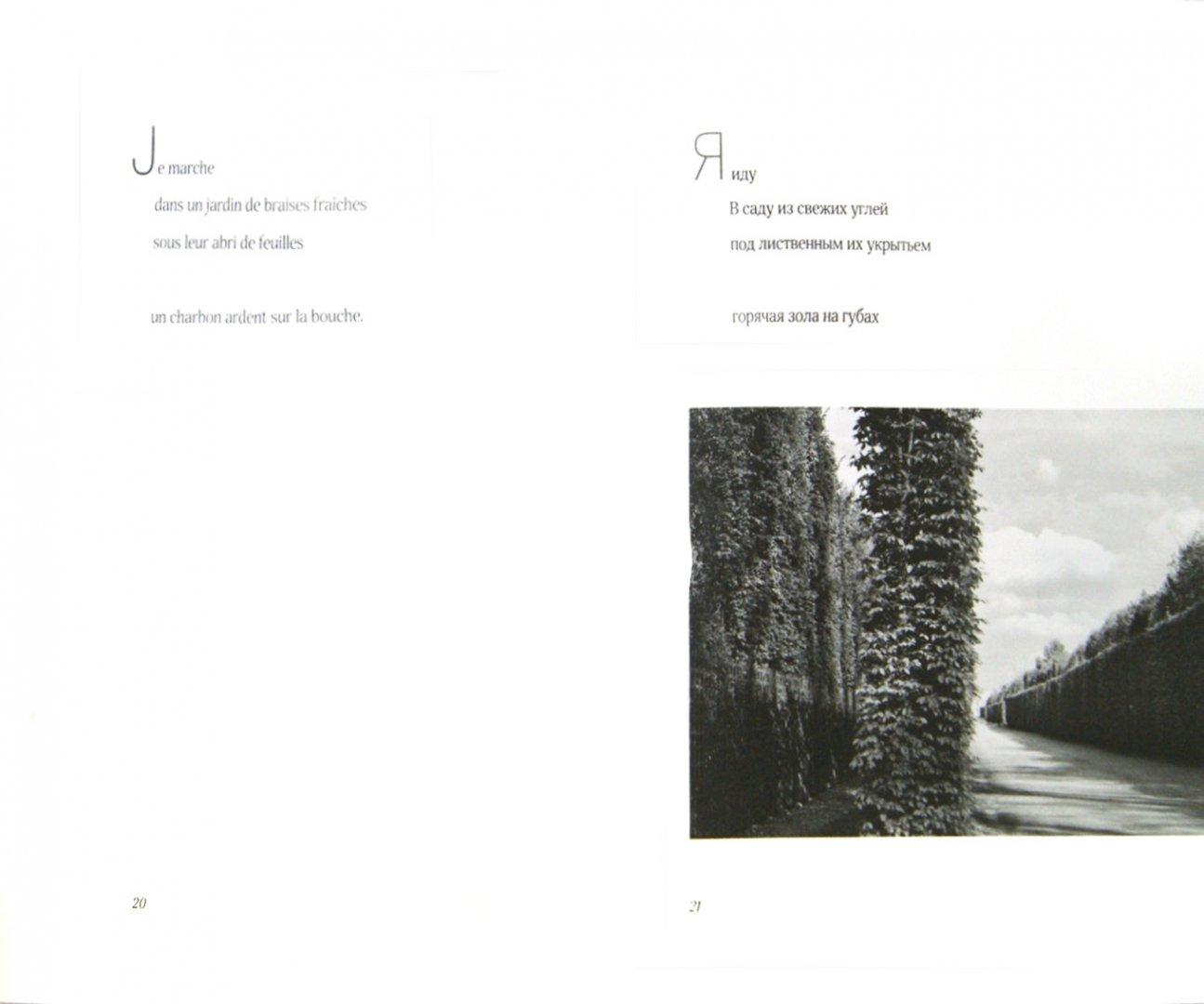 Иллюстрация 1 из 21 для В комнатах садов. Dans les chambres des vergers - Филипп Жакоте   Лабиринт - книги. Источник: Лабиринт
