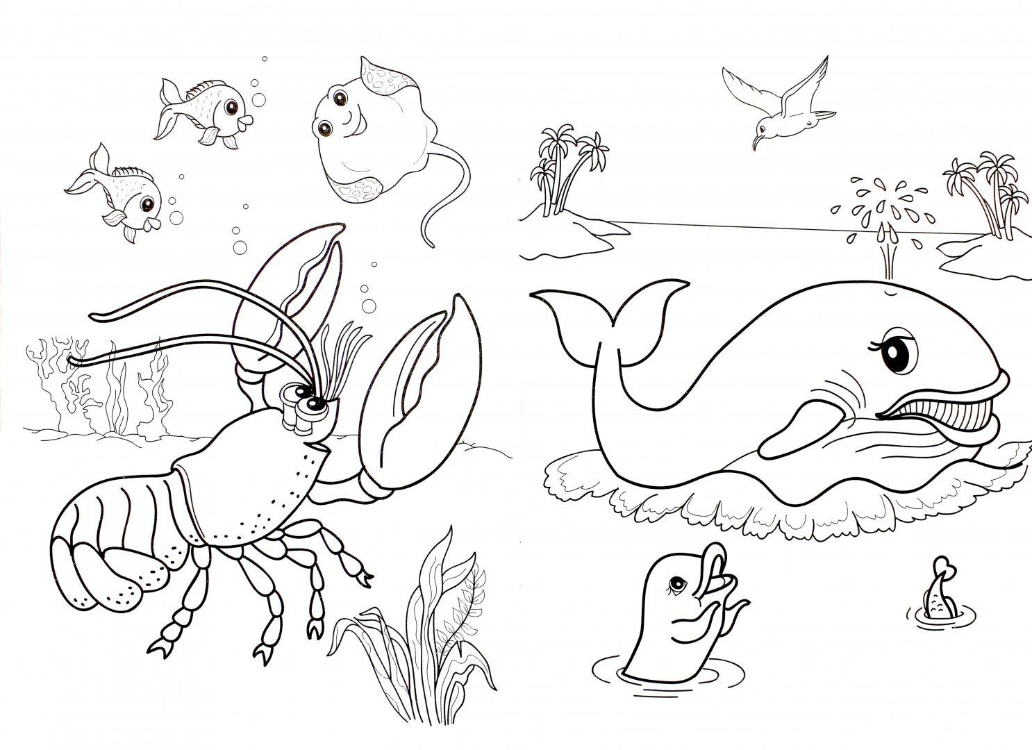 Картинка подводный мир раскраска, картинки мультяшные открытки