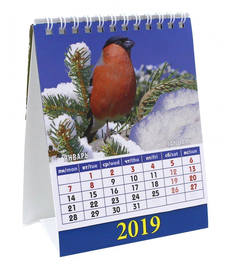Картинки на февраль календарь