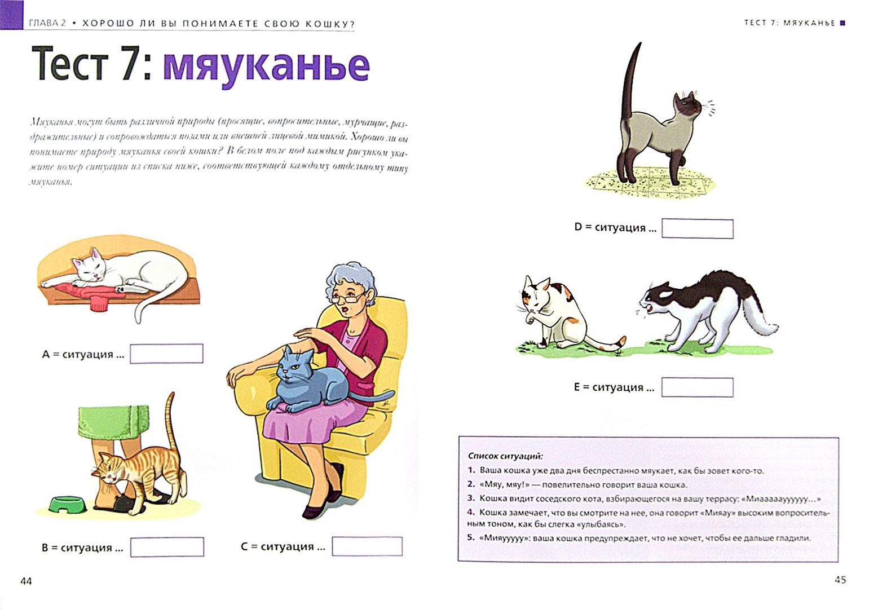 Иллюстрация 1 из 13 для Расшифруйте язык вашей кошки. Позы, мяуканье, метки... - Валери Драмар   Лабиринт - книги. Источник: Лабиринт