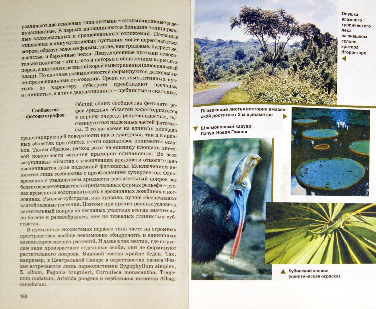 Иллюстрация 1 из 38 для Биогеография - Дроздов, Второв | Лабиринт - книги. Источник: Лабиринт