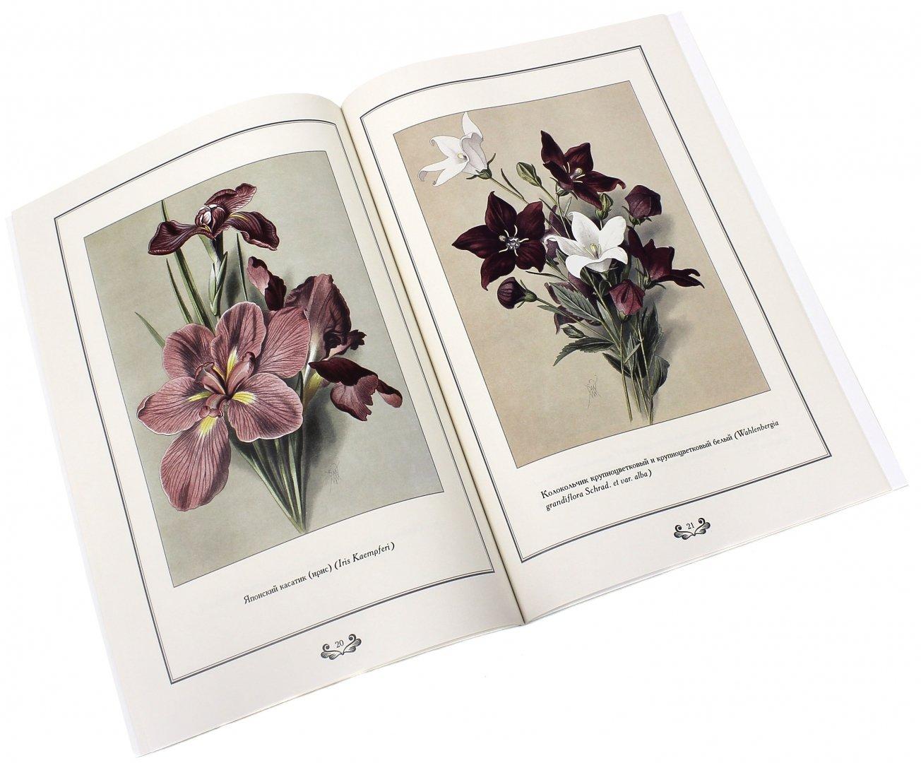 наборы для открыток цветы далее изменилась жизнь