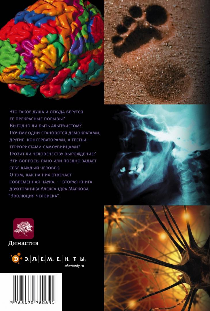 Иллюстрация 1 из 12 для Эволюция человека. В 2-х книгах. Книга 2. Обезьяны, нейроны и душа - Александр Марков | Лабиринт - книги. Источник: Лабиринт