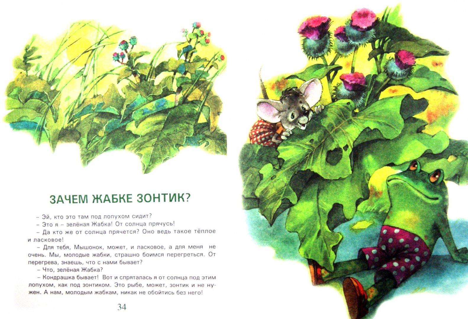 Иллюстрация 1 из 31 для Сказки Чудо-дерева - Валерий Кастрючин | Лабиринт - книги. Источник: Лабиринт