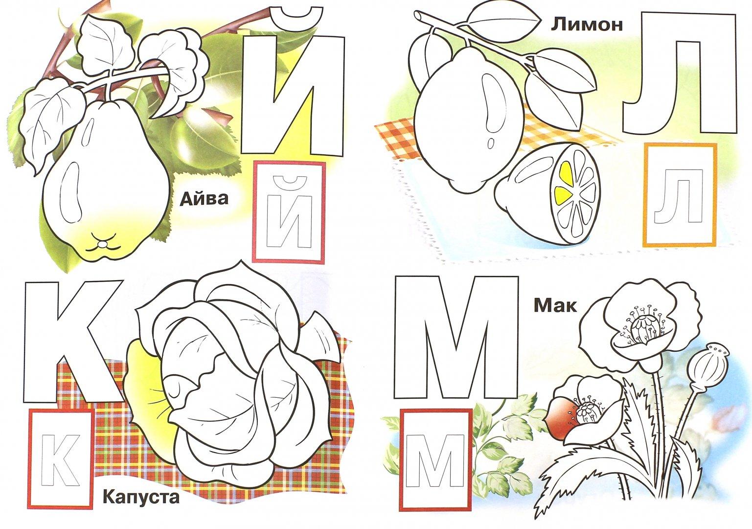 запчасти алфавит в картинках фрукты и овощи еще три