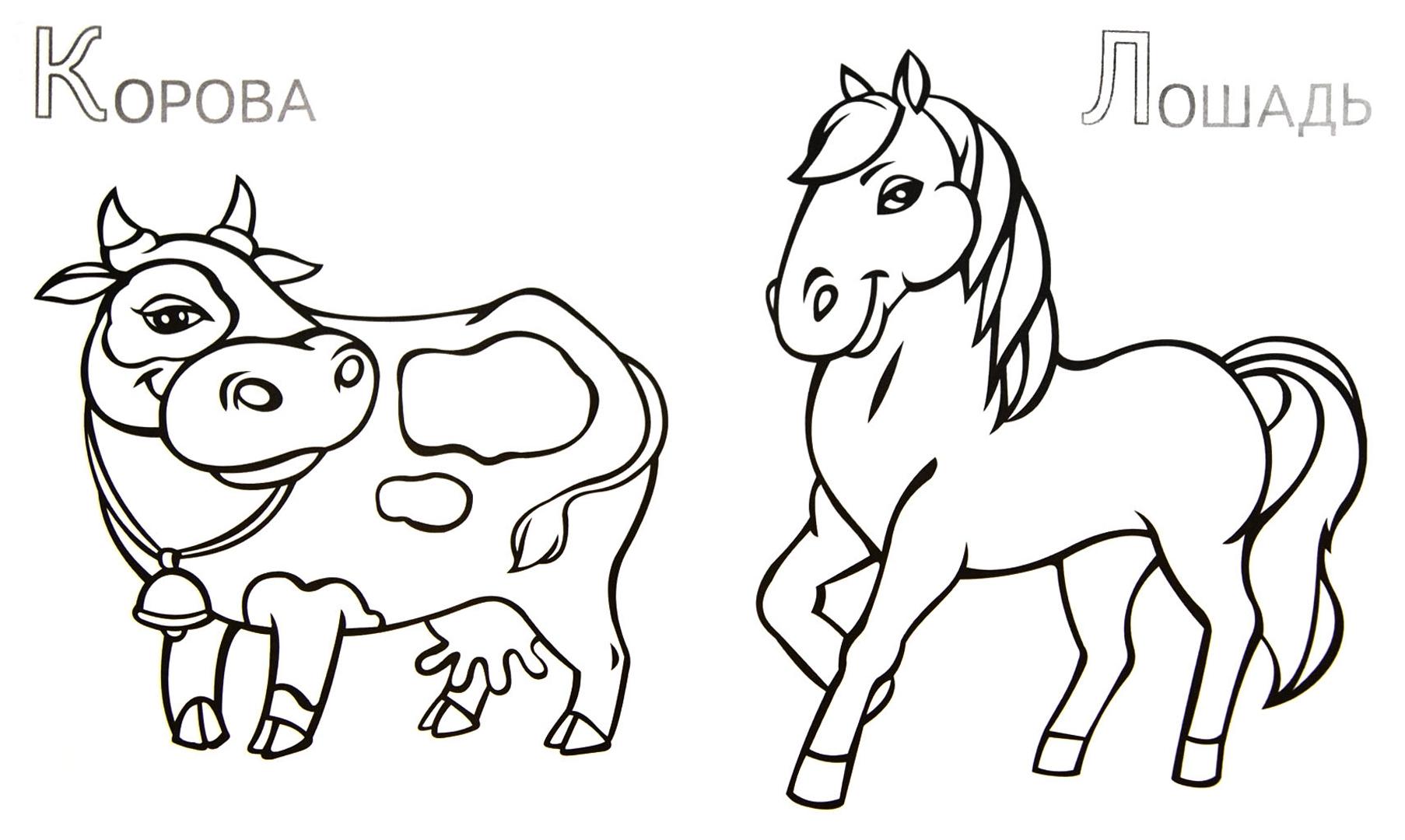 Иллюстрация 1 из 5 для Забавные домашние животные | Лабиринт - книги. Источник: Лабиринт