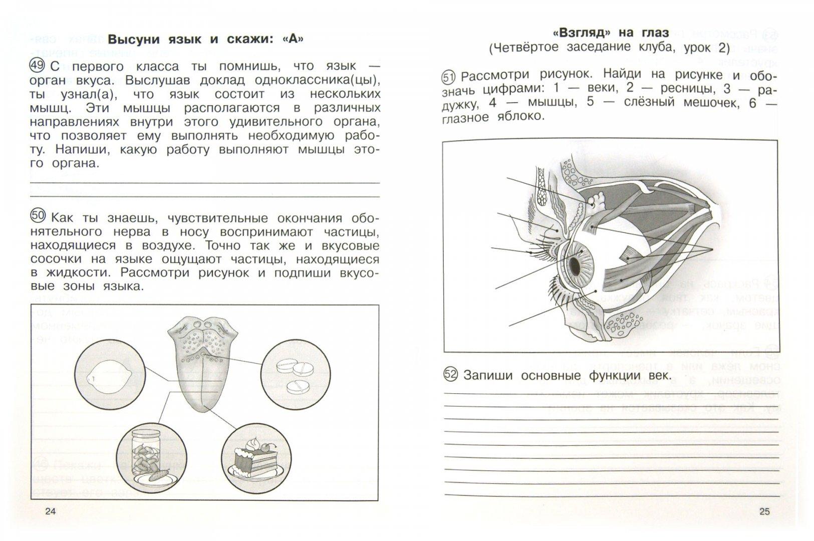 Иллюстрация 1 из 21 для Окружающий мир. 4 класс. Тетрадь для самостоятельной работы №2 - Федотова, Трафимова, Трафимов, Кудрова | Лабиринт - книги. Источник: Лабиринт