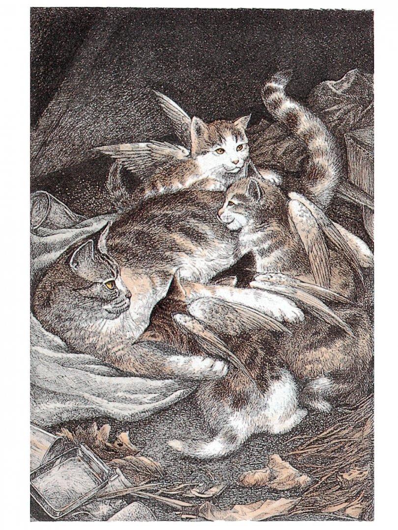 Иллюстрация 1 из 54 для Крылатые кошки - Гуин Ле | Лабиринт - книги. Источник: Лабиринт