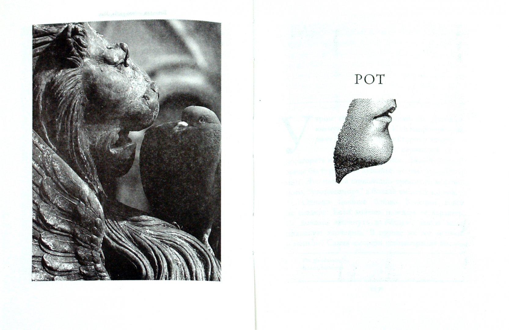 Иллюстрация 1 из 8 для Венеция - это рыба - Тициано Скарпа | Лабиринт - книги. Источник: Лабиринт