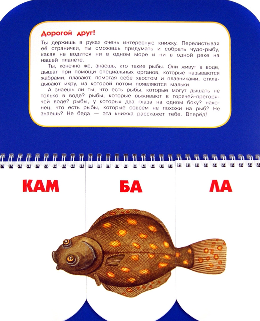 Иллюстрация 1 из 12 для Пере-рыбы. Собери удивительную рыбку. 512 смешных рыб под одной обложкой - Н. Федорова | Лабиринт - книги. Источник: Лабиринт