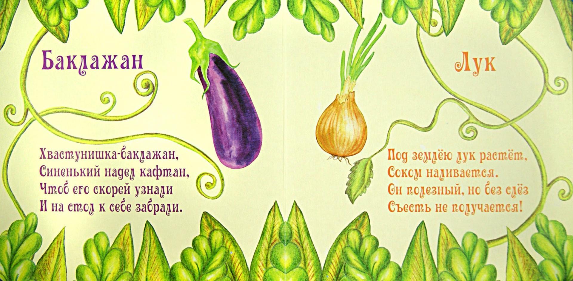 Иллюстрация 1 из 6 для Овощи - Наталья Курлат | Лабиринт - книги. Источник: Лабиринт