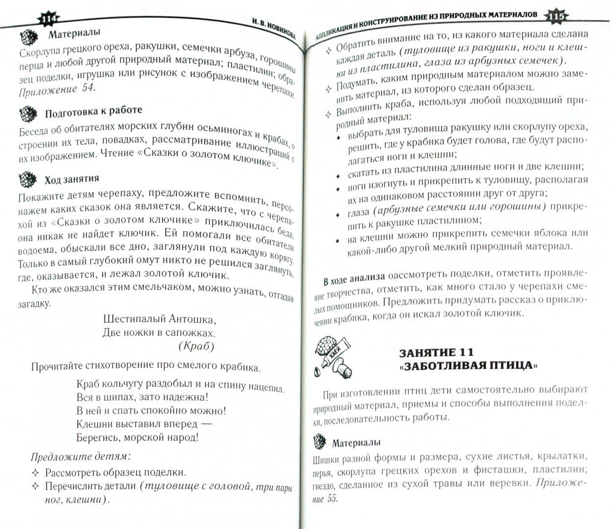 Иллюстрация 1 из 12 для Аппликация и конструирование из природных материалов в детском саду - Новикова, Новикова | Лабиринт - книги. Источник: Лабиринт