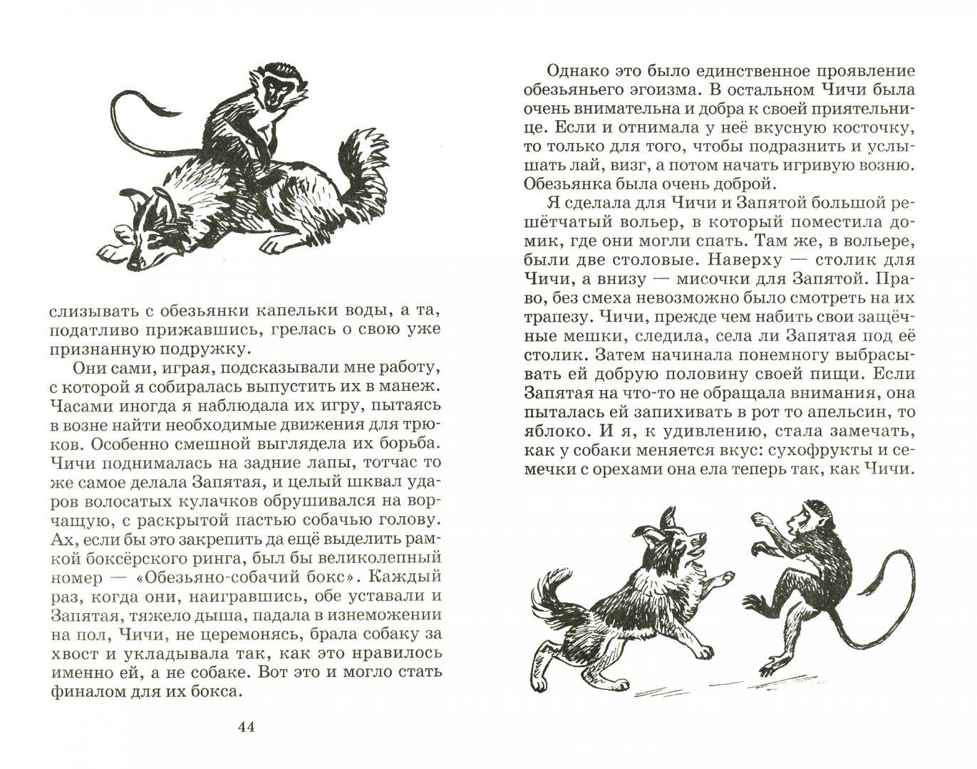 Иллюстрация 1 из 20 для Мой дом на колесах - Наталия Дурова | Лабиринт - книги. Источник: Лабиринт