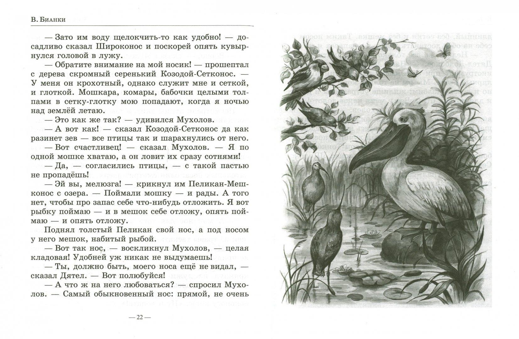 Иллюстрация 1 из 26 для Лесные домишки. Рассказы. Сказки. Повести - Виталий Бианки   Лабиринт - книги. Источник: Лабиринт