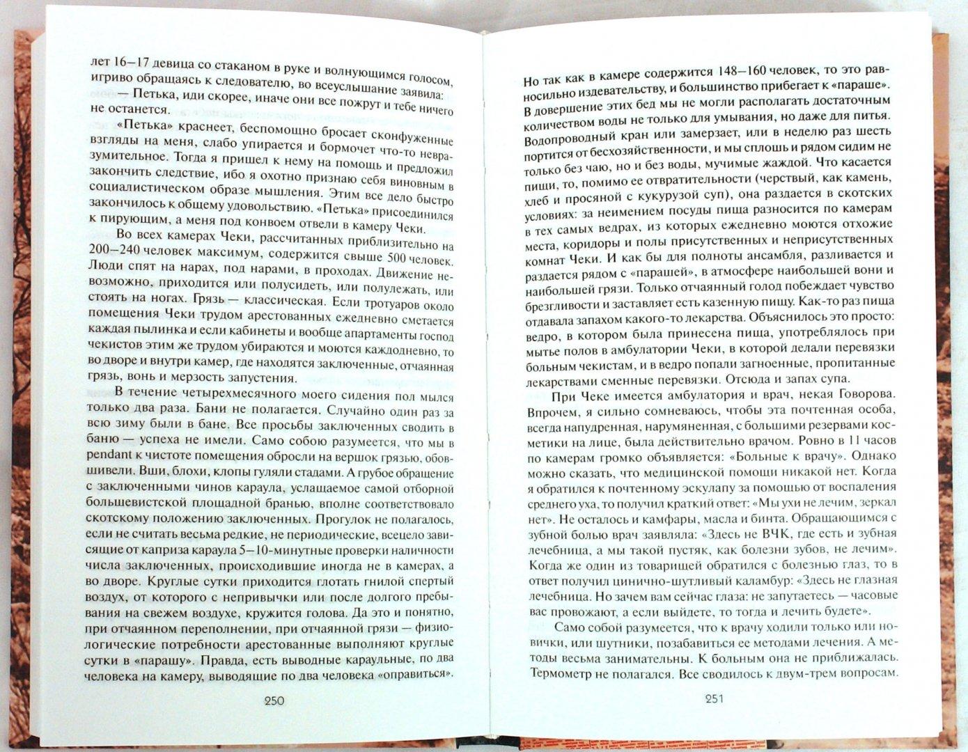 Иллюстрация 1 из 11 для Красный террор глазами очевидцев   Лабиринт - книги. Источник: Лабиринт