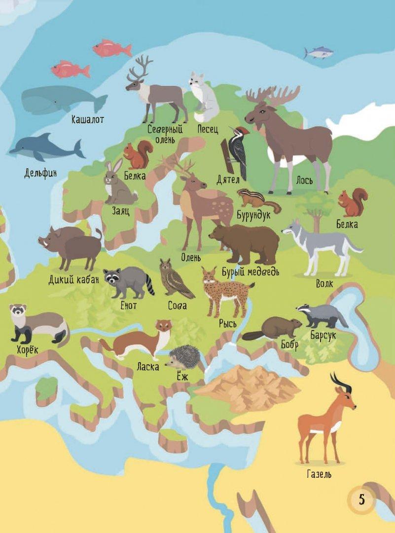 карта россии с картинками животных сырья, конструкций перемещение