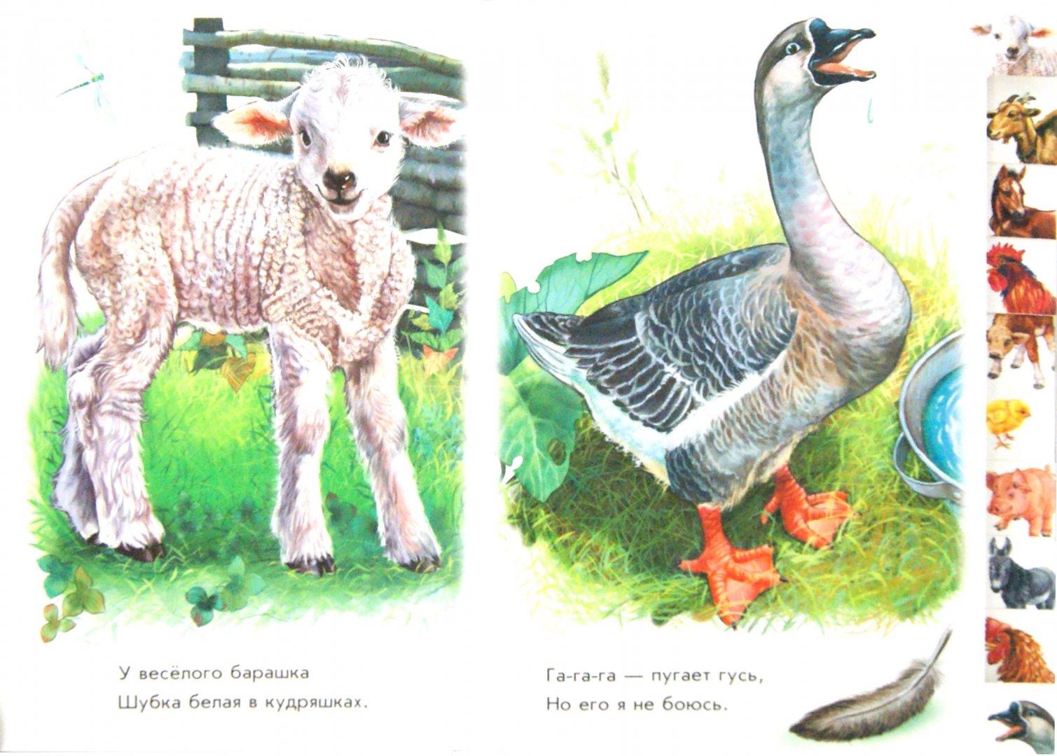 Иллюстрация 1 из 12 для Во дворе - Олеся Квитка | Лабиринт - книги. Источник: Лабиринт
