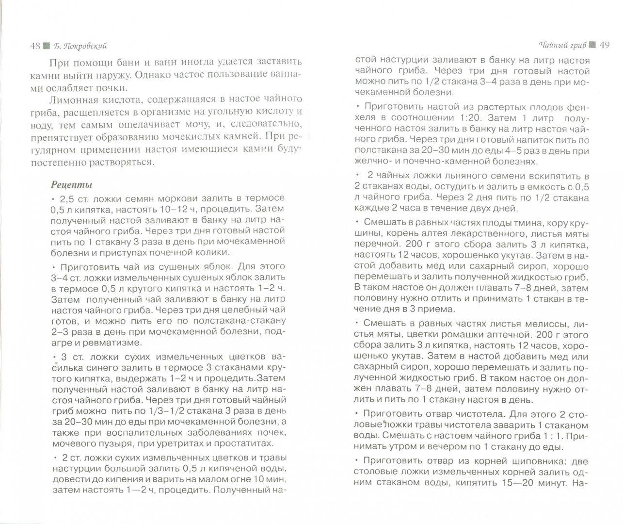 Иллюстрация 1 из 2 для Чайный гриб - Борис Покровский | Лабиринт - книги. Источник: Лабиринт