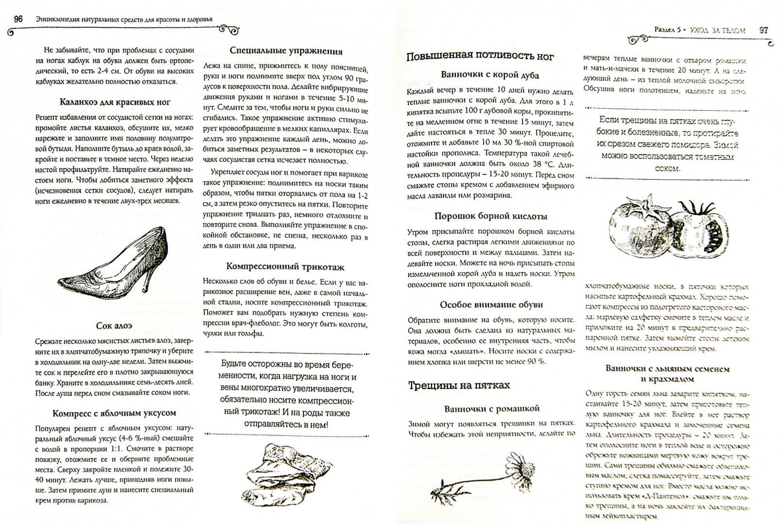 Иллюстрация 1 из 7 для Энциклопедия натуральных средств для красоты и здоровья - О. Варламова | Лабиринт - книги. Источник: Лабиринт