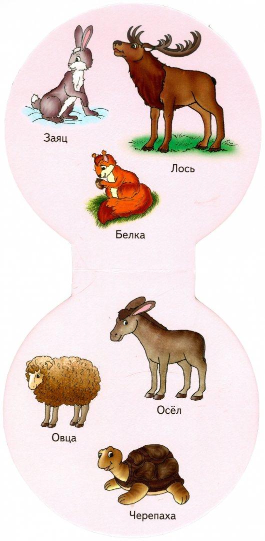Иллюстрация 1 из 8 для Наши первые слова. Животные | Лабиринт - книги. Источник: Лабиринт
