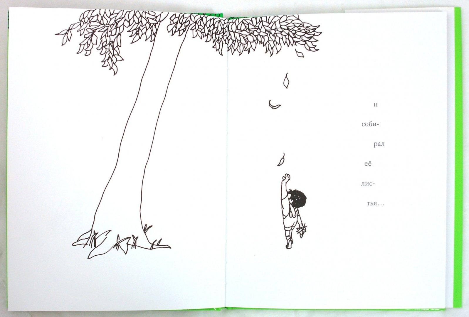 Иллюстрация 1 из 44 для Щедрое дерево - Шел Силверстайн | Лабиринт - книги. Источник: Лабиринт