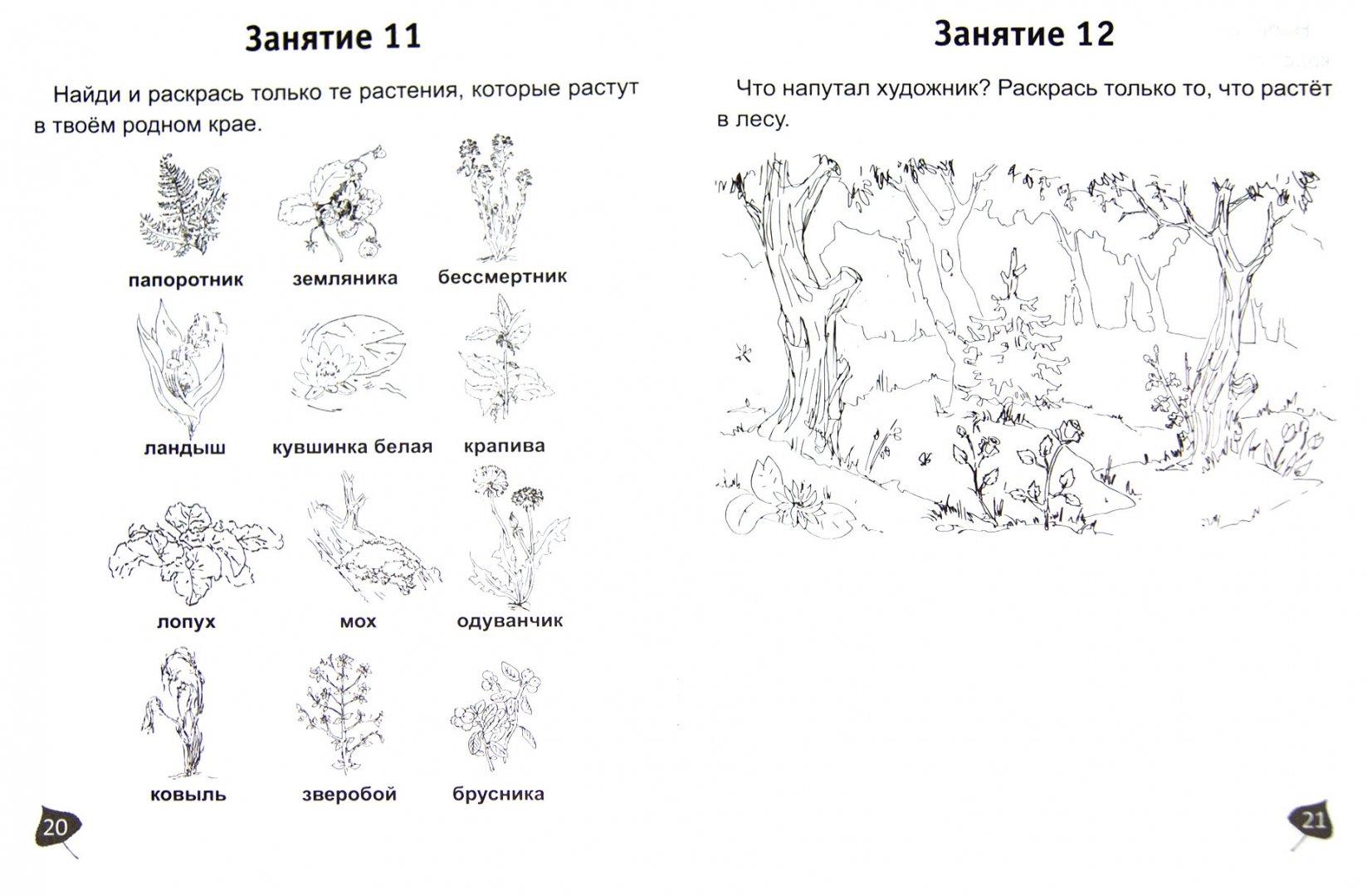 Иллюстрация 1 из 2 для В мире природы. Индивидуальная тетрадь для подготовки к школе детей 5-7 лет - Марина Тарчукова   Лабиринт - книги. Источник: Лабиринт