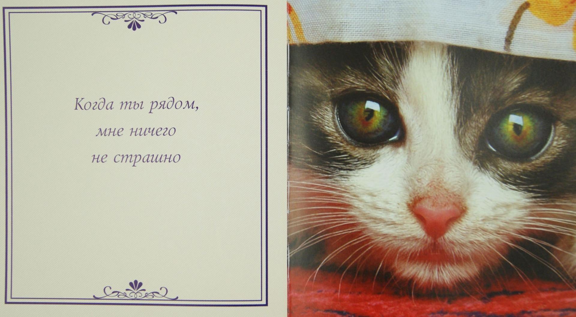 свой открытка самому лучшему человеку на свете это искусство, все