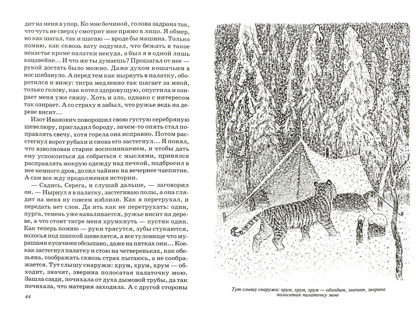 Иллюстрация 1 из 25 для Встречи с амурским тигром - Сергей Кучеренко   Лабиринт - книги. Источник: Лабиринт