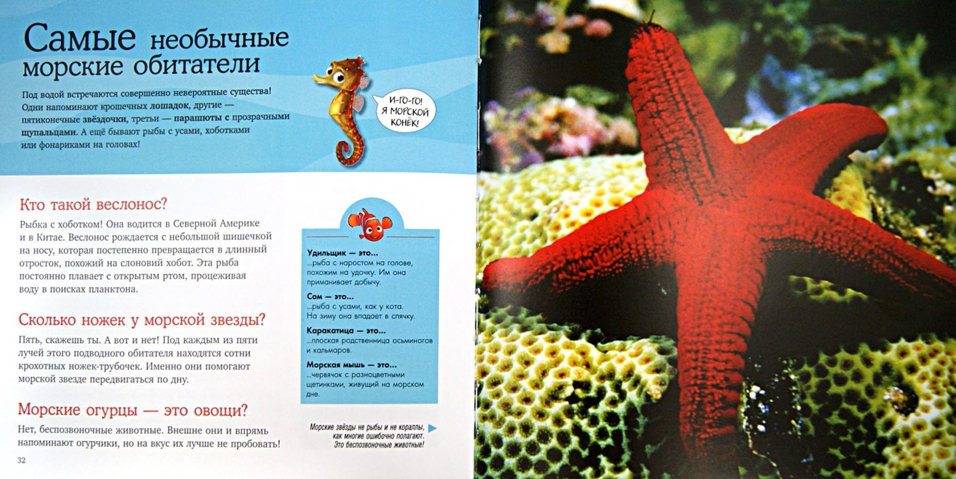 Иллюстрация 1 из 25 для Морские обитатели. Удивительная энциклопедия животных | Лабиринт - книги. Источник: Лабиринт