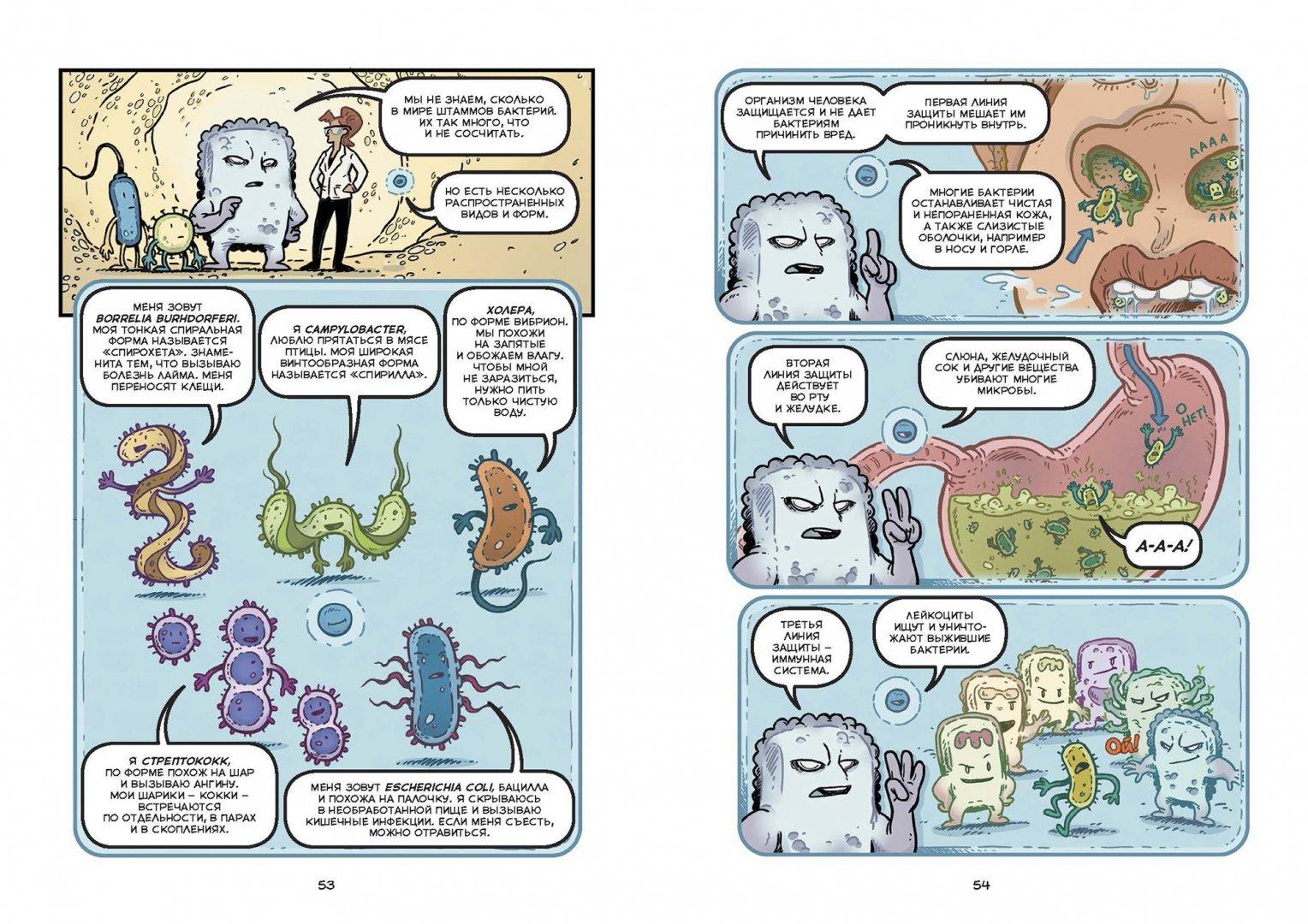 Иллюстрация 4 из 31 для Вирусы и микробы. Научный комикс - Фалинн Кох | Лабиринт - книги. Источник: Лабиринт