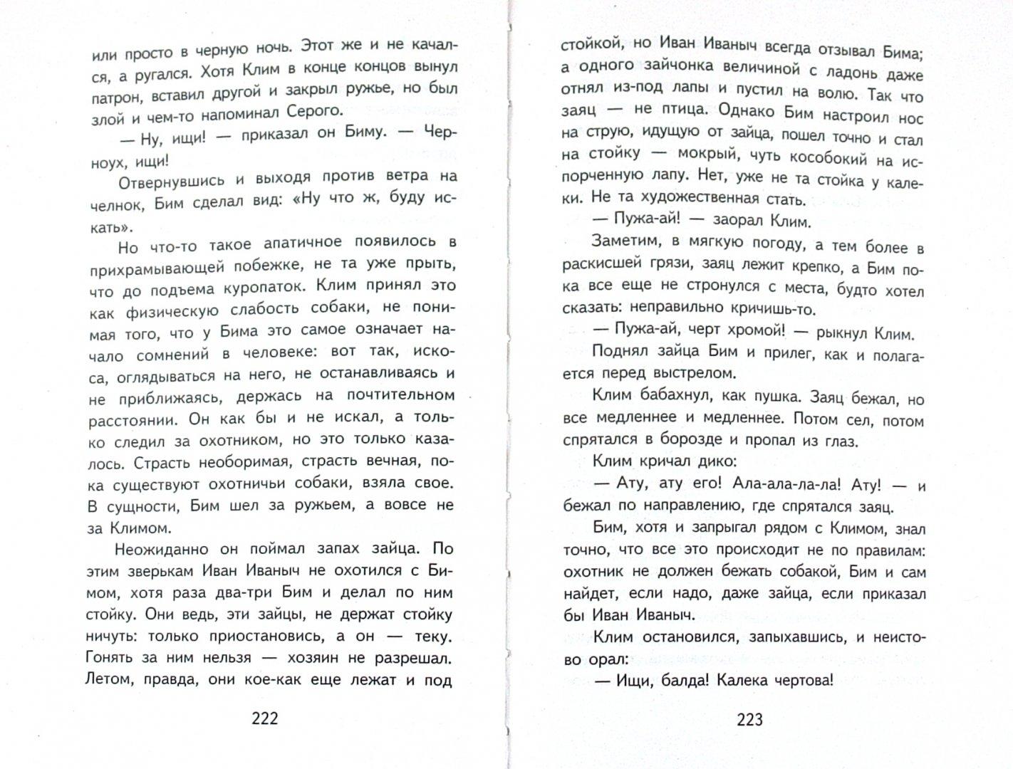 Иллюстрация 1 из 4 для Белый Бим Черное ухо - Троепольский, Меттер | Лабиринт - книги. Источник: Лабиринт
