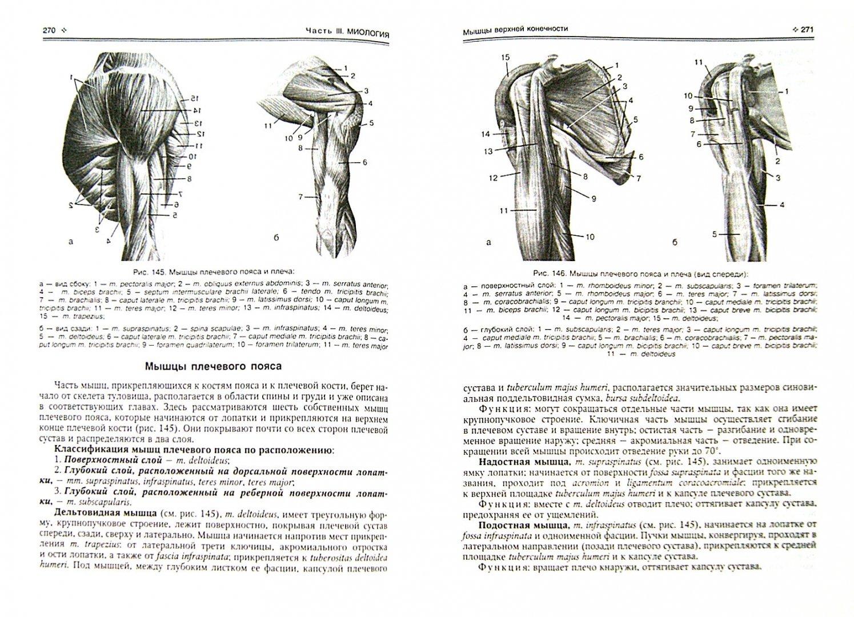Иллюстрация 1 из 16 для Нормальная анатомия человека. Учебник для медицинских вузов. В 2-х томах - Иван Гайворонский   Лабиринт - книги. Источник: Лабиринт