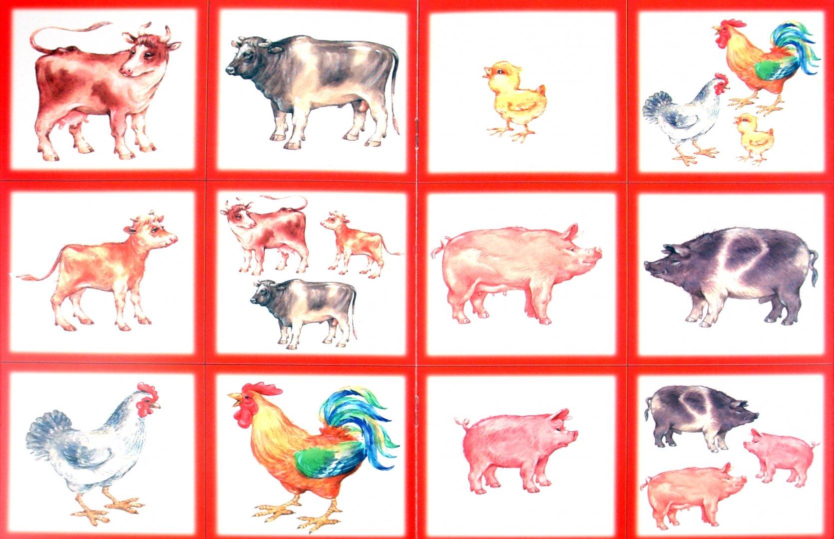 его картинки домашних животных для малышей распечатать желательно готовить вечера