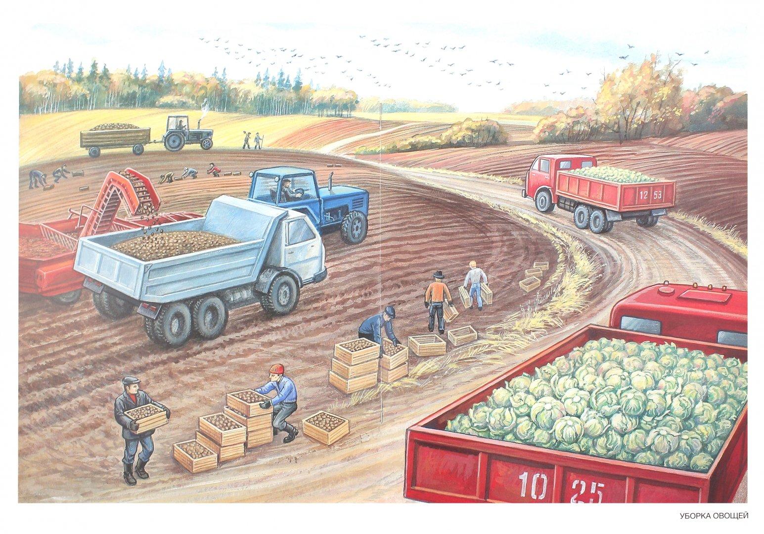 Картинки на тему человек и труд