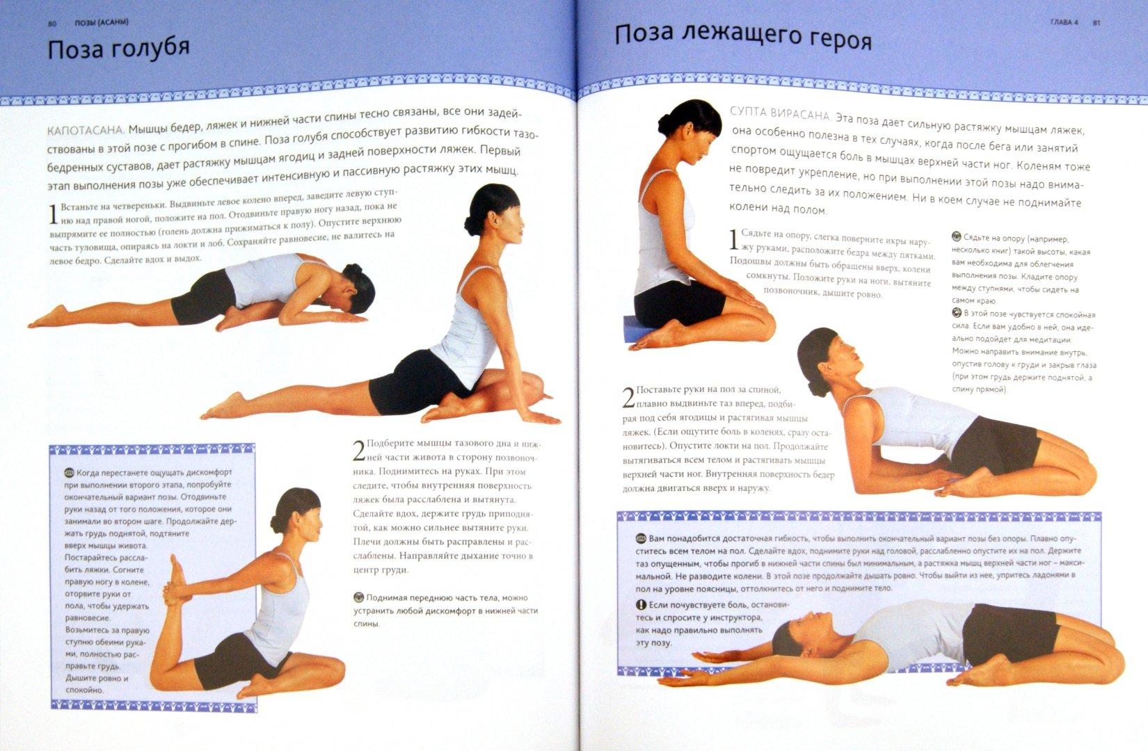 Иллюстрация 1 из 7 для Йога для всех: История, теория, практика - Тара Фрэйзер | Лабиринт - книги. Источник: Лабиринт