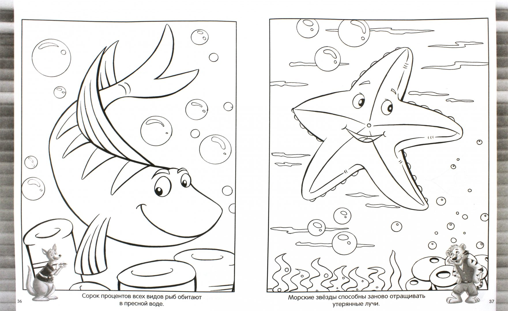 Картинки на морскую тему для детей раскраска, новым годом немецком