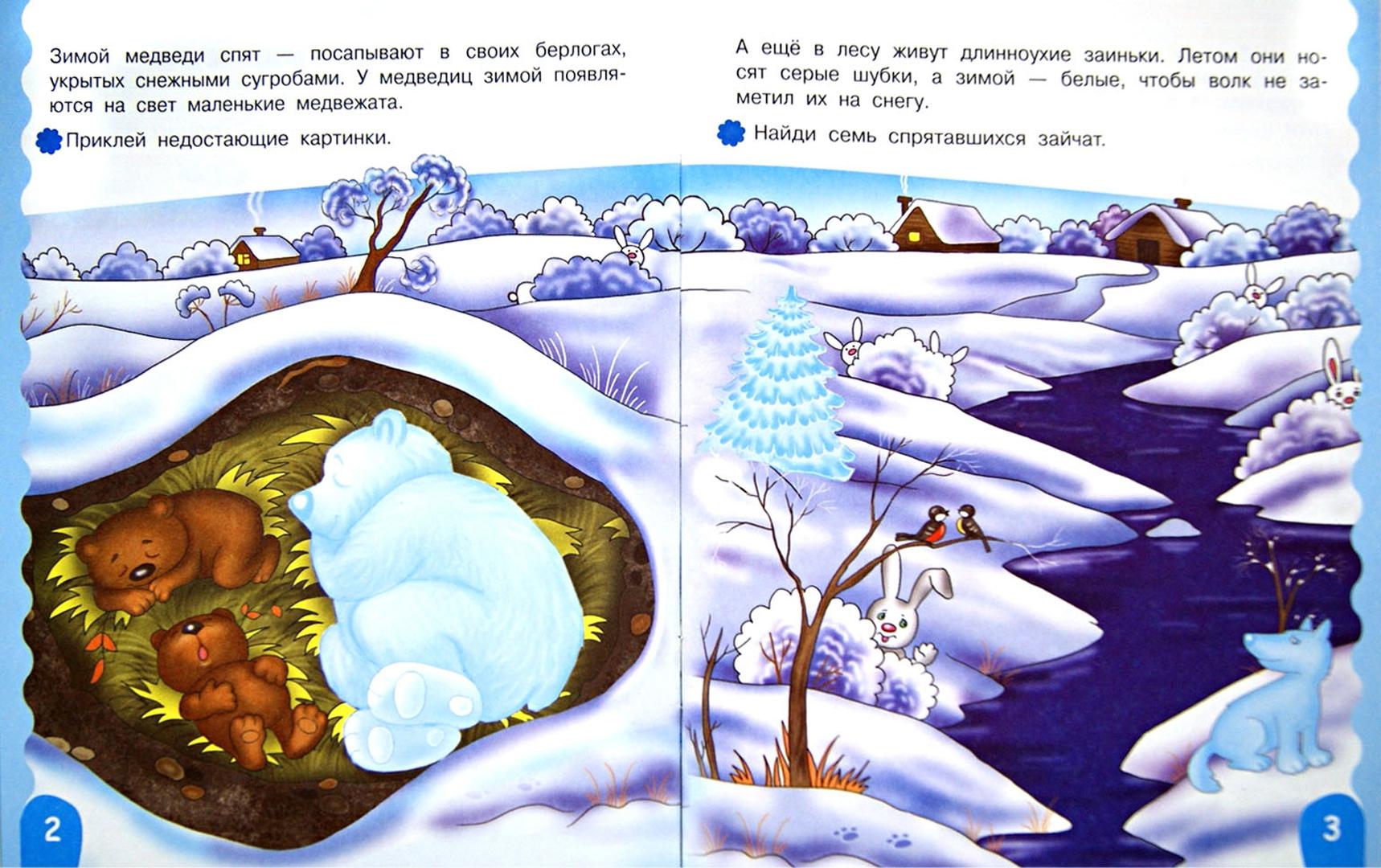 Иллюстрация 1 из 27 для Кто в лесу живет - Е. Шарикова | Лабиринт - книги. Источник: Лабиринт