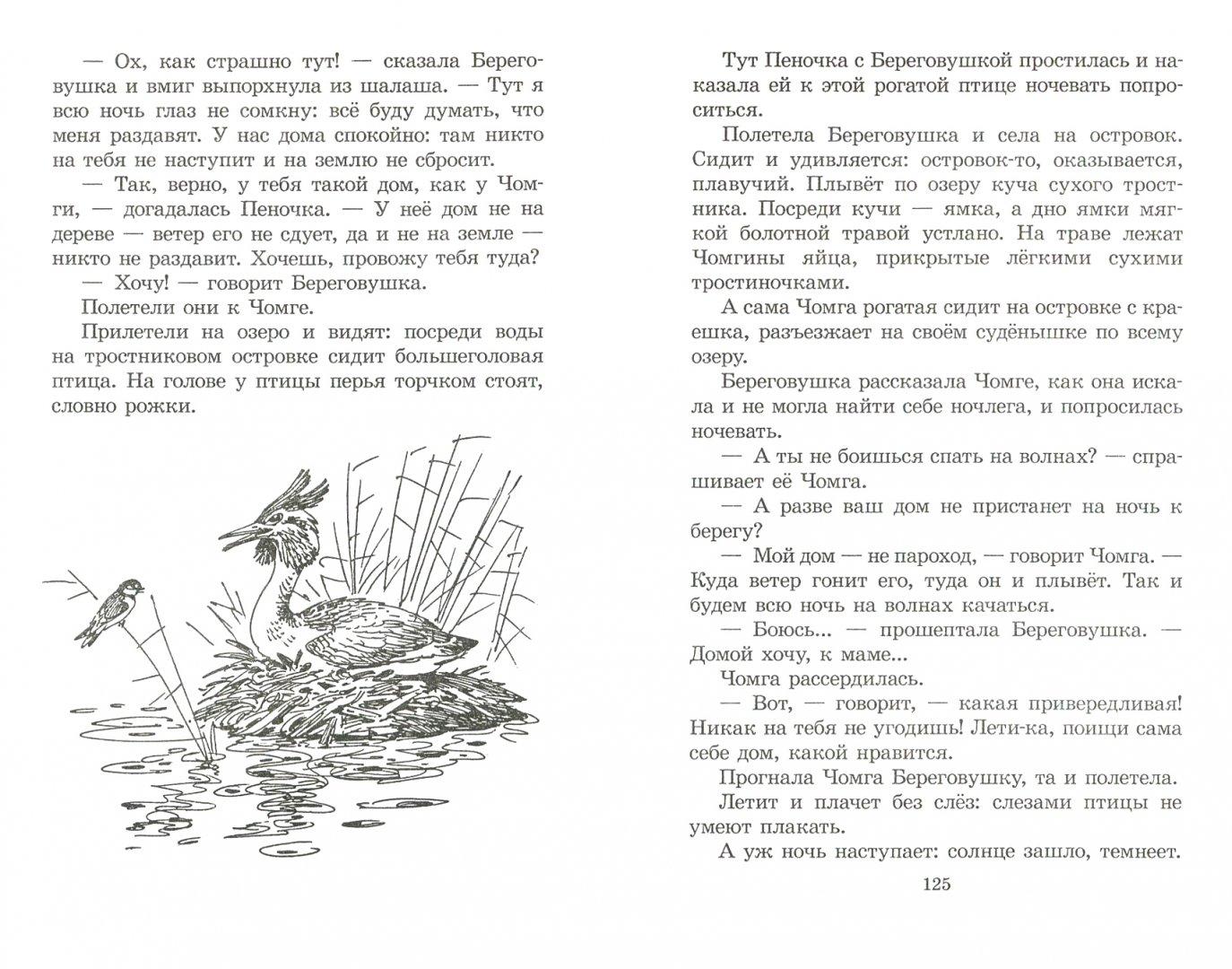 Иллюстрация 1 из 9 для Чей нос лучше? - Виталий Бианки | Лабиринт - книги. Источник: Лабиринт