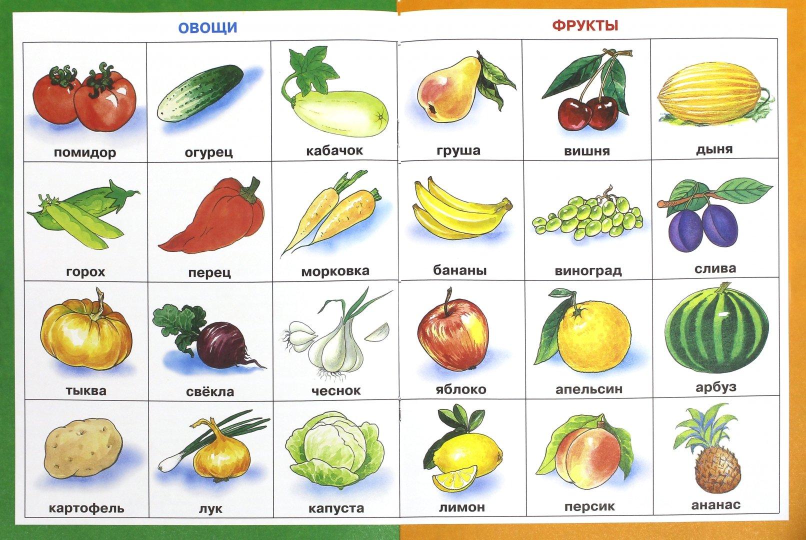 фрукты с картинками и названиями день