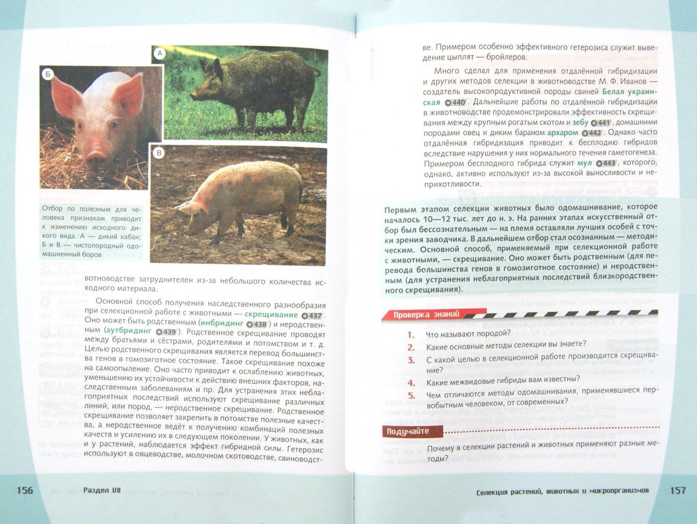 Иллюстрация 1 из 7 для Биология. Общие закономерности. 9 класс. Учебник. ФГОС (+CD) - Захаров, Мамонтов, Сивоглазов   Лабиринт - книги. Источник: Лабиринт